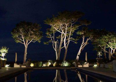 Pool Uplights